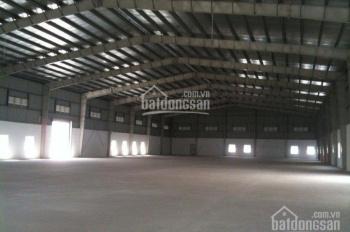 Cho thuê xưởng DT 10000m2 Mỹ Hạnh, giá 450tr
