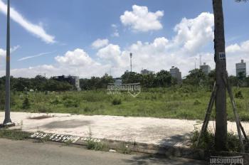 Cần bán đất MT Nguyễn An Ninh, Dĩ An BD nằm sau lưng BigC Dĩ An có SHR XDTD. Giá 14tr/m2 0933377050