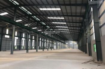 Cho thuê kho xưởng DT 1500m2 - 4500m2 cụm CN Minh Hải, Văn Lâm, Hưng Yên. LH 0979 929 686
