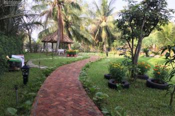 Cần bán nhà vườn view sông, diện tích 875m2, sổ đỏ riêng, Phong Phú, Bình Chánh