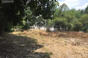 Bán đất đường nhánh HL 609, Xã Phú An, Bến Cát, Bình Dương