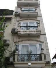 Bán nhà đường Hai Bà Trưng DT 4x21m, giá chỉ 21 tỷ