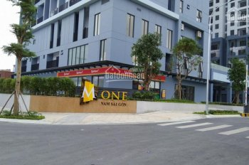 Cho thuê căn hộ M-One Nam Sài Gòn 2PN