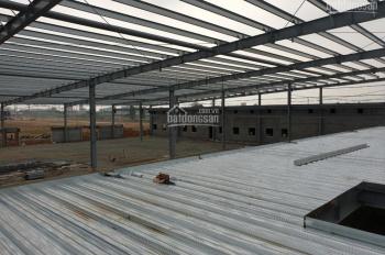 Cho thuê nhà xưởng, kho bãi tại khu công nghiệp Bình Xuyên, Vĩnh Phúc - công ty TNHH Loa Thành