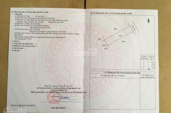 Bán đất An Viễn 115m2, KCN Giang Điền, SHR, Chính chủ, sang tên ngay