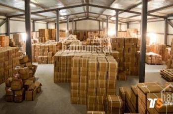 Kho chứa hàng diện tích đa dạng kèm dịch vụ Logistics từ A-Z khu vực KCN Tân Bình - Vĩnh Lộc A