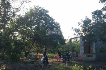 Bán nhà vườn tại ấp Cây Da, xã Bình Lộc, thị xã Long khánh, liên hệ: 0935 621 439