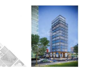 Văn phòng cho thuê tại Anh Minh Tower, 56 Nguyễn Đình Chiểu, Q1: 95m2 - 110m2 - 205m2 - 410m2