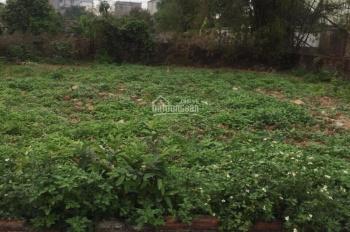 Bán gấp mảnh đất gần đường Võ Nguyên Giáp gần giáp với đường Lê Hữu Tựu