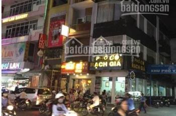 Chủ nhà cho thuê 3 căn nhà liền kề ngay ngã tư Phan Xích Long, Quận Phú Nhuận, ngay khúc sầm uất