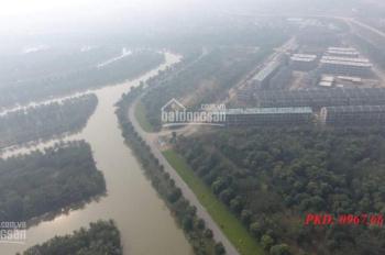 Ecopark - Vạn Tuế bán chính chủ 80m2 - 3.6 tỷ
