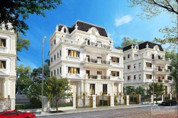 Bán biệt thự song lập 135m2 nhận nhà ở ngay, gần đường Nguyễn Xiển, giá chủ đầu tư. LH 0915.200.990