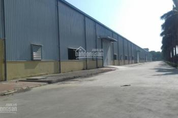 Cho thuê nhà xưởng KCN Đại Đồng, Bắc Ninh LH 0982.405.823
