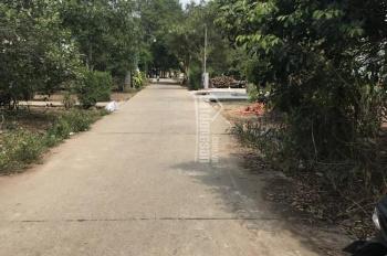 Bán vườn chôm chôm Thái thu hoạch hàng năm - đất ONT+ CLN