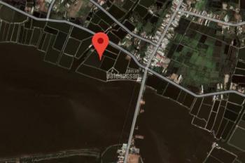 Bán gấp hồ nuôi tôm cua cá, giá đầu tư tại Tam Giang