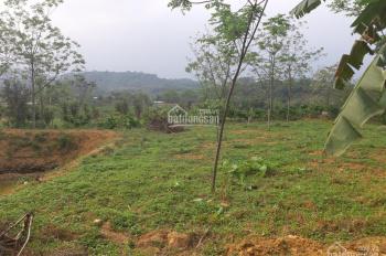 Cần bán 1700m2 đất thổ cư gần ủy ban xã Yên Bài