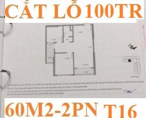 CC bán cắt lỗ 100tr 02 CH số P2 02 tầng 15-16 Vincity Ocean Park Gia Lâm, 60m2, 2PN, giá gốc-100tr