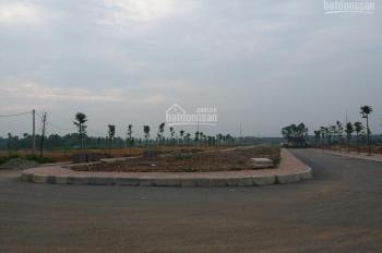 Bán 300m2 đất phân lô tái định cư Đại học Quốc gia Hà Nội, xã Thạch Hòa, Thạch Thất, Hà Nội