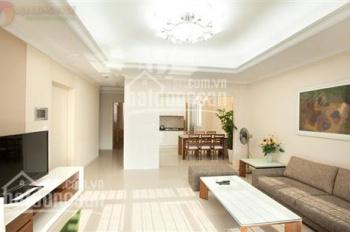 Cho thuê căn hộ Cao ốc An cư, Quận 2, nhà mới với 90m2, giá 13 triệu/tháng, lầu cao nội thất đẹp