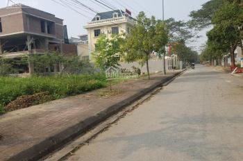 Bán đất khu đô thị Nam Sông Lạch Tray, DT 360m2, phường Anh Dũng, quận Dương Kinh, Hải Phòng