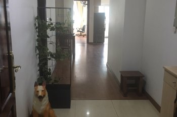 Gia đình tôi cần cho thuê căn hộ Hapulico Complex, Vũ Trọng Phụng, full đồ, LH: Ms Hà 0903406758