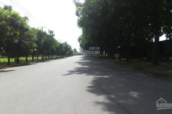 Cho thuê kho, nhà xưởng tại cụm công nghiệp Xuân Thới Sơn. LH: 0354020505