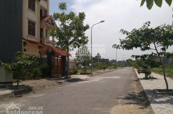 Bán đất khu đô thị Nam Sông Lạch Tray, phường Anh Dũng, quận Dương Kinh, Hải Phòng