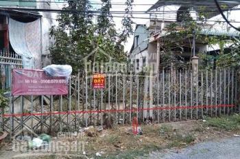Bán đất sổ đỏ thửa số 509 tại ấp Bình Hòa, thị trấn Lấp Vò, Đồng Tháp