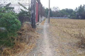 Gia đình kẹt tiền cần bán 3726m2 xã Quy Đức, huyện Bình Chánh, giá 900 nghìn/1 m2 quá rẻ