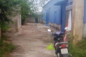 Cho thuê xưởng, kho tại thành phố Nam Định