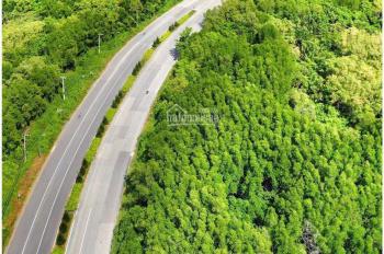 Chính chủ cần bán 2.4ha 3 mặt tiền đường Lý Nhơn và đường Đá Xanh, giá chỉ 580.000/m2