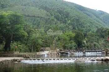 Bán 52ha khu du lịch sinh thái Lái Thiêu, gốm đất TM - DV và đất rừng, pháp lý full dự án, giá CC