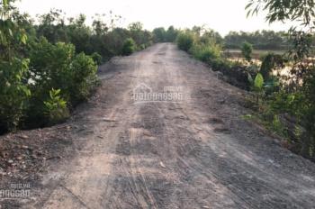 Bán đất huyện Đức Hòa 3 mẫu đất chính chủ xã Tân Phú, giá rẻ 2 tỷ 1 mẫu, đường xe tải tới đất