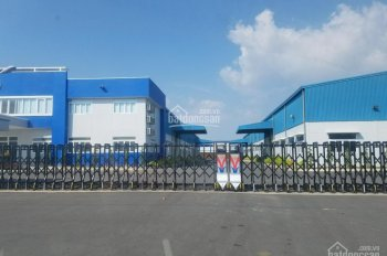 Cho thuê kho - nhà xưởng xây dựng mới 100% tại KCN Yên Phong, Bắc Ninh, DT: 2.000m2 - 15.000m2