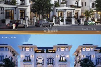 Cần bán căn biệt thự song lập thiết kế siêu đẹp tại dự án Louis City. LH PKD 0973252683