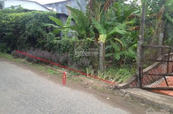 Chuyển nhượng thửa đất số 01, 107b và 155 tại ấp Bình Hòa, thị trấn Lấp Vò, Đồng Tháp