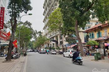 Bình 5m cho thuê nhà mặt phố Phan Bội Châu 150m2, giá 44 triệu/th
