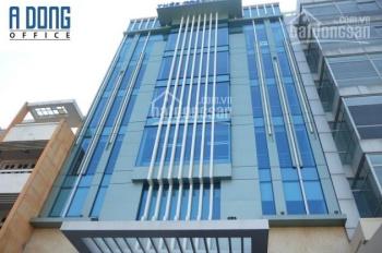 Cho thuê văn phòng 230m2, 85tr/th Trường Sơn, Tân Bình, Thép Toàn Thắng Building. Thanh 0965154945