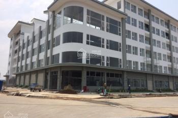 Cho thuê nhà thuộc dự án CII Lakeview 2 Thủ Thiêm, DT sàn 385m2, 1 hầm, 1 trệt, 3 lầu, giá 58 tr/th