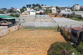 Bán gấp lô đất XD hoàn toàn mặt tiền đường Đinh Công Tráng, P7, TP. Đà Lạt, DT 1000m2, giá 25 tr/m2