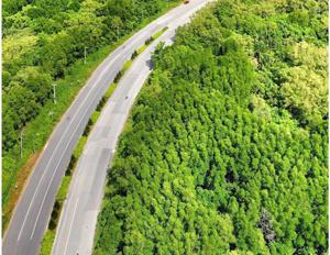 Bán 28 hécta đất nuôi trồng thuỷ sản, mặt tiền đường Dương Văn Hạnh, xã Lý Nhơn, huyện Cần Giờ