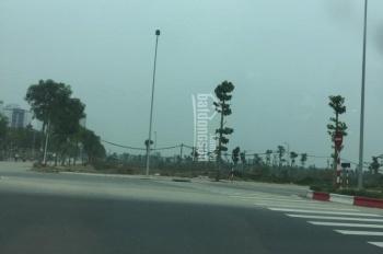 Cho thuê đất và bãi trông giữ xe ô tô tại Cầu Giấy, Hà Nội