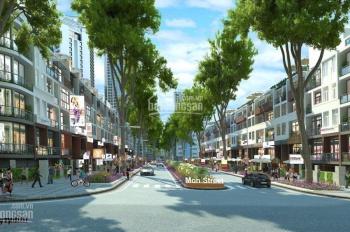 CĐT Hải Đăng mở bán nhà mặt phố đường 17.5m ưu đãi cực khủng chiết khấu cao. LH 0977.696.619