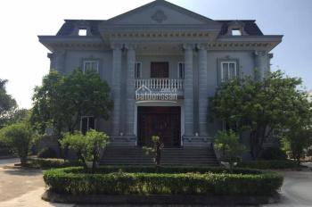 Cho thuê nhà văn phòng tại KCN Tân Quang, Văn Lâm, Hưng Yên