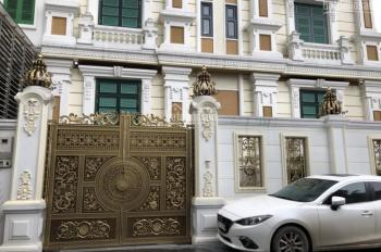 Chính chủ cần bán căn biệt thự 290m2, full đồ, giá 85 tỷ. LH: 0933.718.555