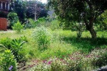 Mở bán dự án khu phức hợp Laca Sa MT Đào Trí, LK Phú Mỹ Hưng. Giá cực sốc TT 875tr/nền 0788484747