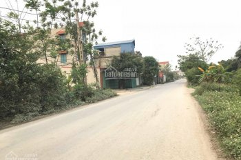 Bán đất mặt đường 426 thôn Thái Bằng, xã Đồng Tân, huyện Ứng Hòa, đường 12m, giá 480 triệu