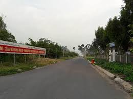 Cần bán đất sản xuất kinh doanh mặt tiền DT852, xã Tân Dương, huyện Lai Vung, Đồng Tháp