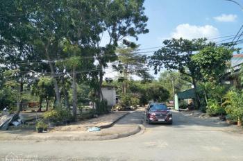 Cần tiền bán gấp lô đất đường Hoàng Hữu Nam, P. Tân Phú, Q.9, cách bến xe Miền Đông 1km, 38tr/m2