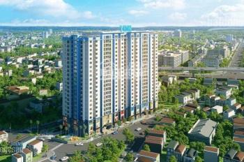 Chính chủ bán căn hộ 3 PN chung cư Amber Riverside 101,9m2